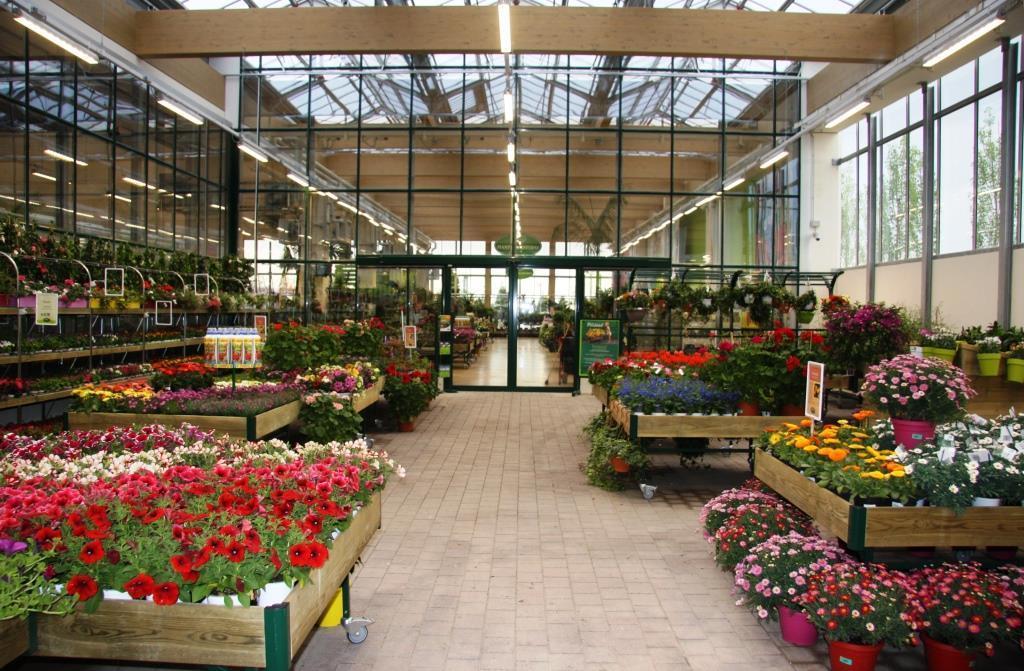 Viridea garden center apre il 9 pdv ad arese for Viridea rho orari
